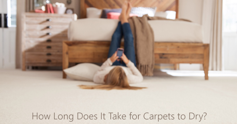 How long do carpets dry