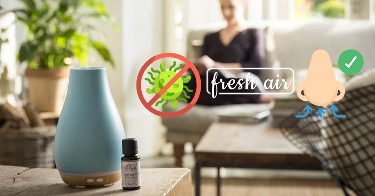 Essential oils cleanse the air, remove airborne bacteria, and create a healthy climate