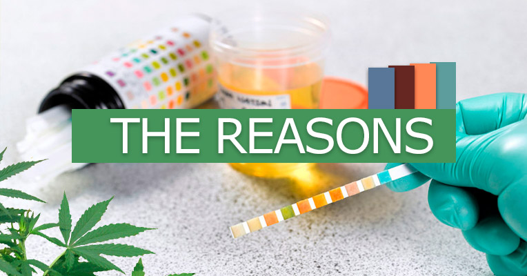 Reasons to use home drug tests