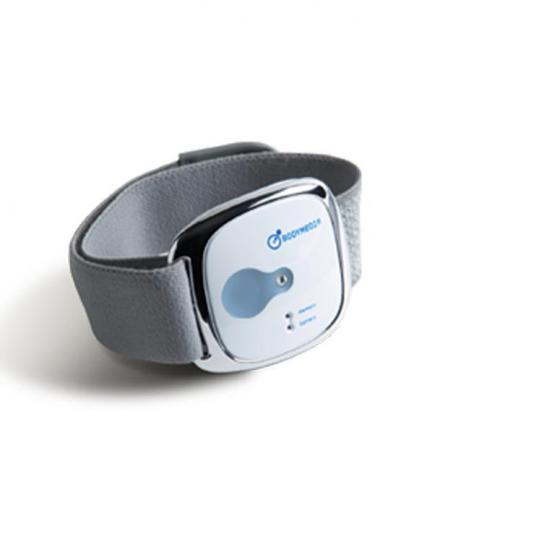 BodyMedia Link Armband Weight Management System