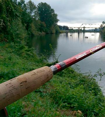 Review of Shimano Stimula 2-Piece Spin Rod