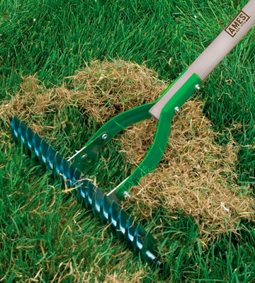 Review of The AMES Companies, Inc 2915100 15-Inch Adjustable Thatch Rake