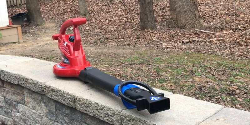 Review of Toro 51621 UltraPlus Leaf Blower Vacuum with Variable-Speed (up to 250 mph) with Metal Impeller, 12 amp