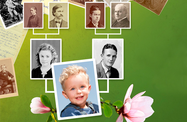 Best Family Tree Software to Find Your Roots