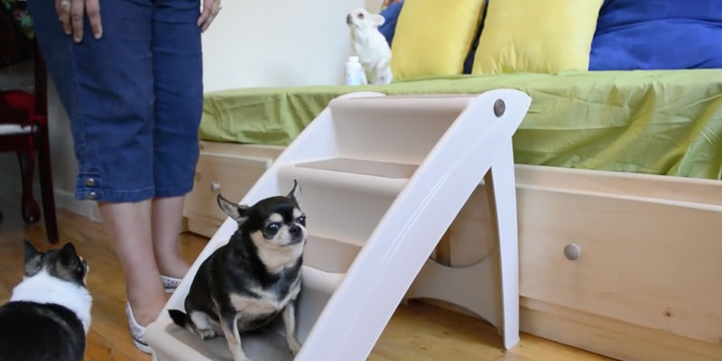 Review of Solvit Pup Step Plus Pet Stairs
