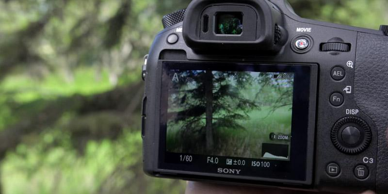 Review of Sony Cyber-shot RX10 III (DSC-RX10M3) Camera