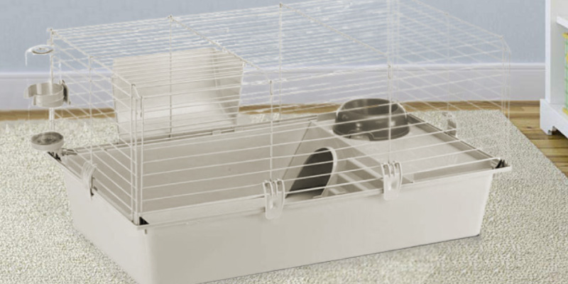 Review of Ferplast Cavie Guinea Pig Cage