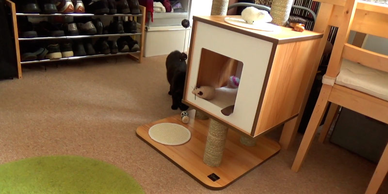 Detailed review of Vesper Cat Tree Furniture