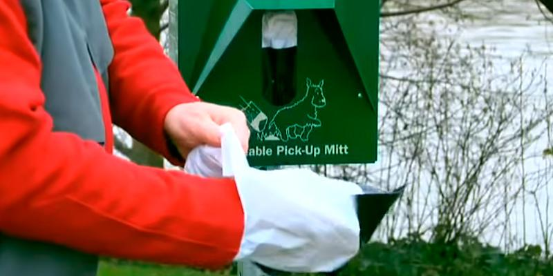 Review of Mutt Mitt F2710 200-Count