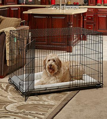 Review of MidWest Homes for Pets iCrate Dog Crate
