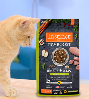 Review of Instinct Raw Natural Dry Cat Food