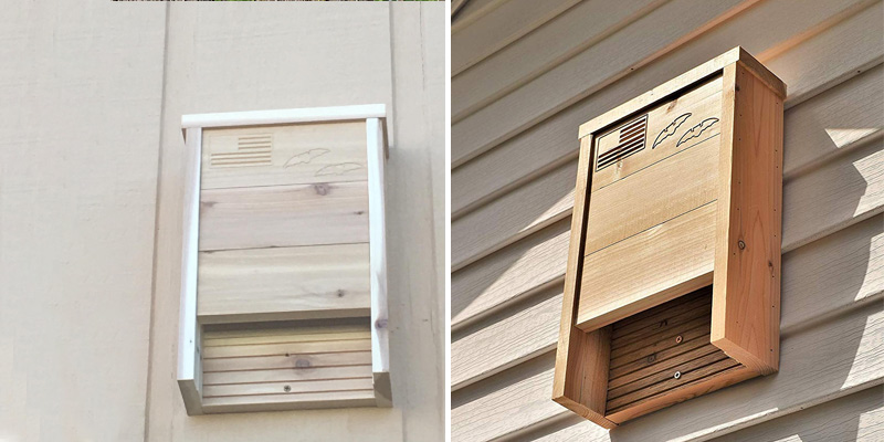Review of Applewood Outdoor Premium Western Red Cedar Bat House