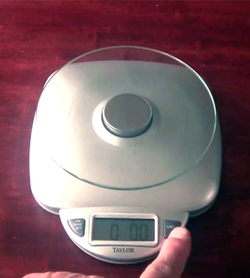 Review of Taylor Precision Products 3842 Digital Food Scale