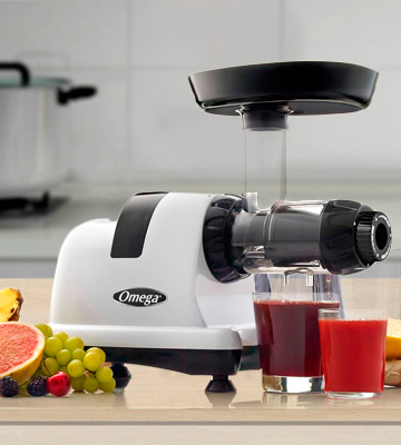 Review of Omega J8006HDS Slow Speed Masticating Juicer