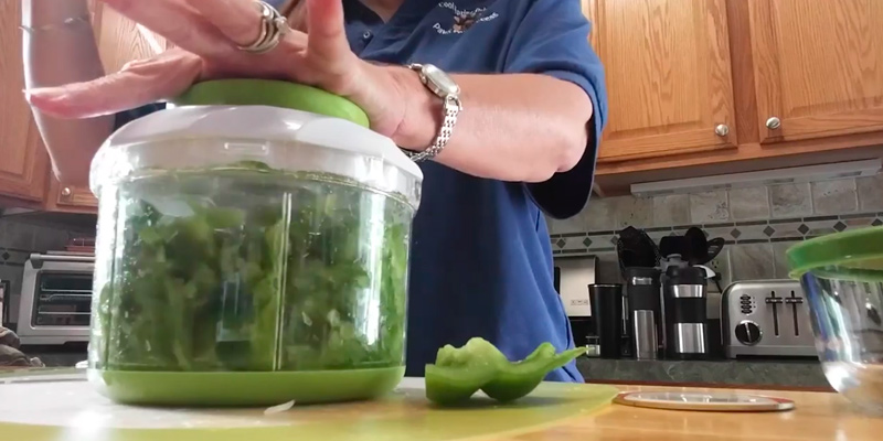 Review of Brieftons Manual 2-Cup Food Chopper