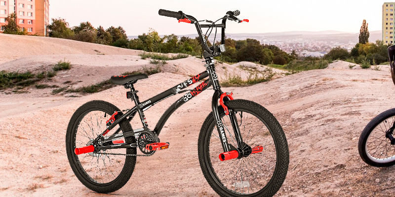 5 Best BMX Bikes Reviews of 2019 - BestAdvisor com
