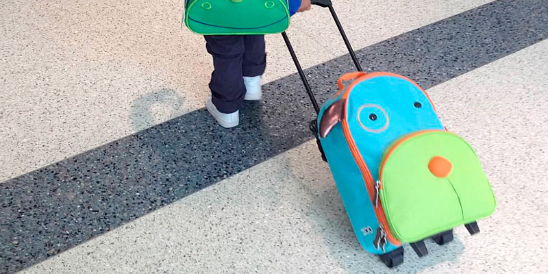 Review of Skip Hop Darby Dog Kids Rolling Luggage
