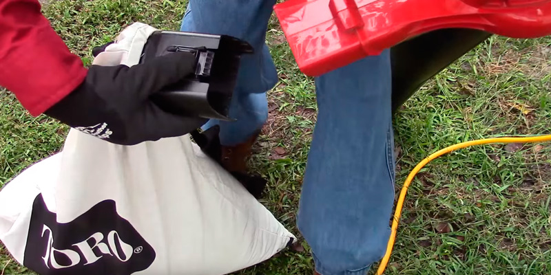 Detailed review of Toro 51619 Ultra Ultra Leaf Blower & Vacuum