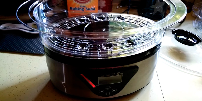 Review of Hamilton Beach 37530A Digital Food Steamer