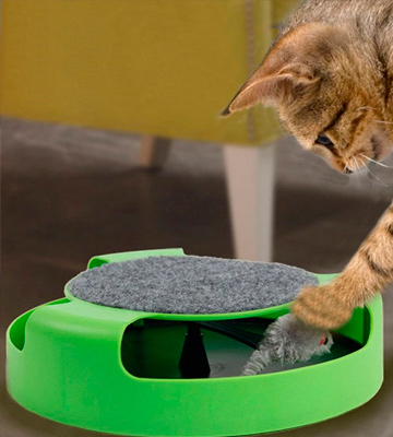 Review of FYNIGO Cat Interactive Toys with a Running Mice and a Scratching Pad