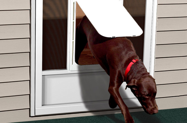 Best Pet Doors