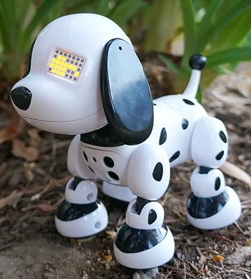 Review of Zoomer Zuppies, Interactive Puppy