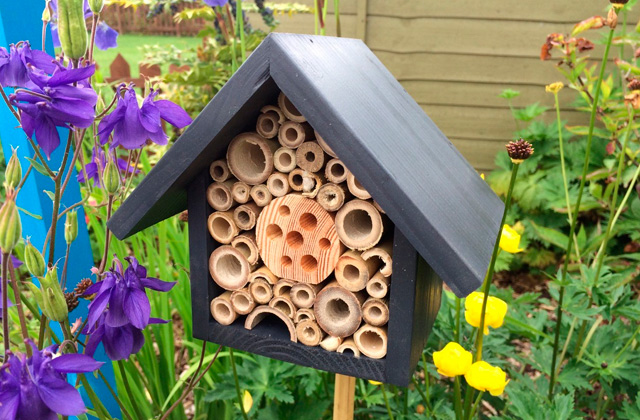 Comparison of Bee Houses to Boost Your Garden's Productivity