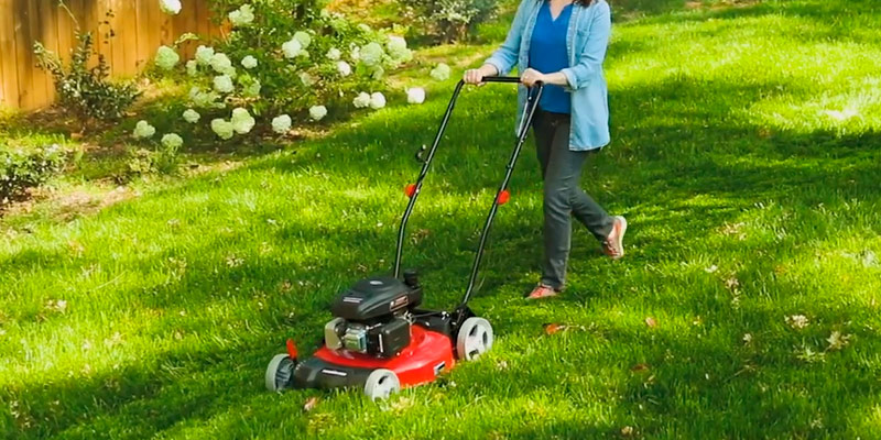 PowerSmart DB2321C Lawn Mower in the use