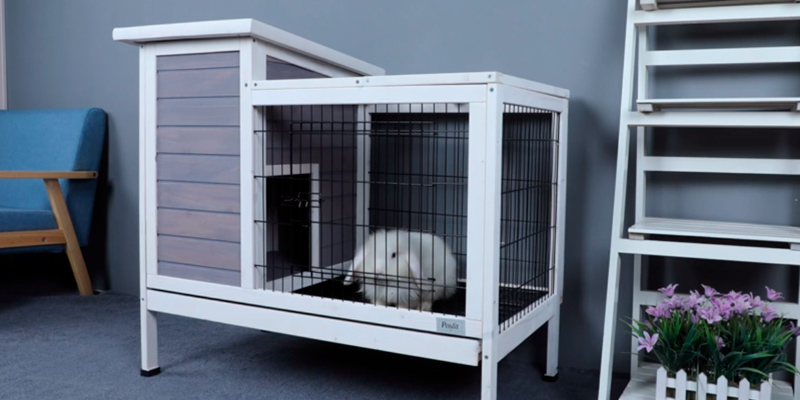 Review of Petsfit Rabbit Hutch Bunny Cage for Indoor Use