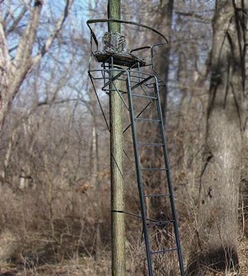 Review of Big Dog BDL-1050 Ladder Treestand