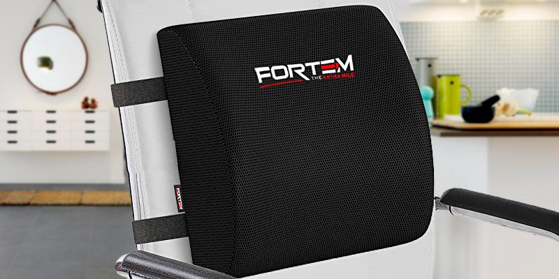 Review of FORTEM THE EXTRA MILE FRTM-17-15-LS Lumbar Support for Office Chair | Back Pillow for Car | Memory Foam Orthopedic Cushion