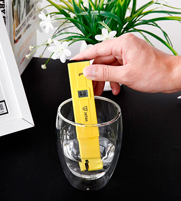 Review of Jellas JLPH01 Pocket Size PH Meter