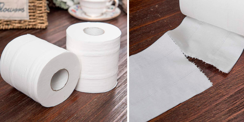 Fog Rain Soft Toilet Paper,White Toilet Paper Toilet Roll Tissue Roll Pack of 10 3-Ply Paper Towels Tissue