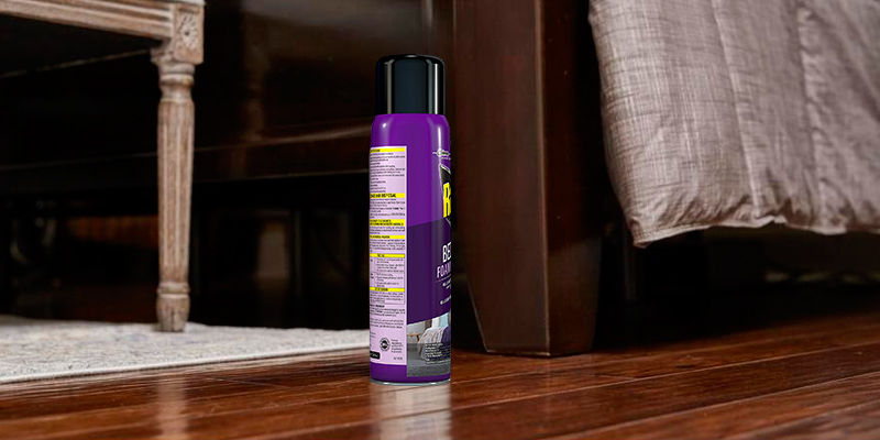 Review of Raid Non-Staining Bed Bug Foaming Spray