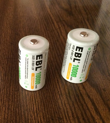 Review of EBL High Capacity Rechargeable D Batteries