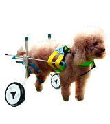 Homend Adjustable Dog Wheelchair
