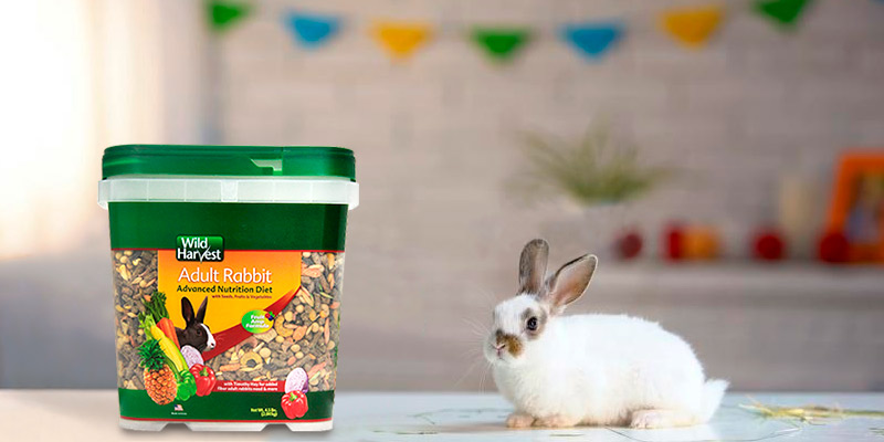 Review of Wild Harvest Advanced Nutrition Diet For Rabbits