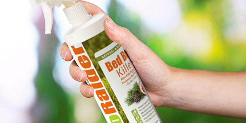 Detailed review of EcoRaider Non-toxic Bed Bug Killer