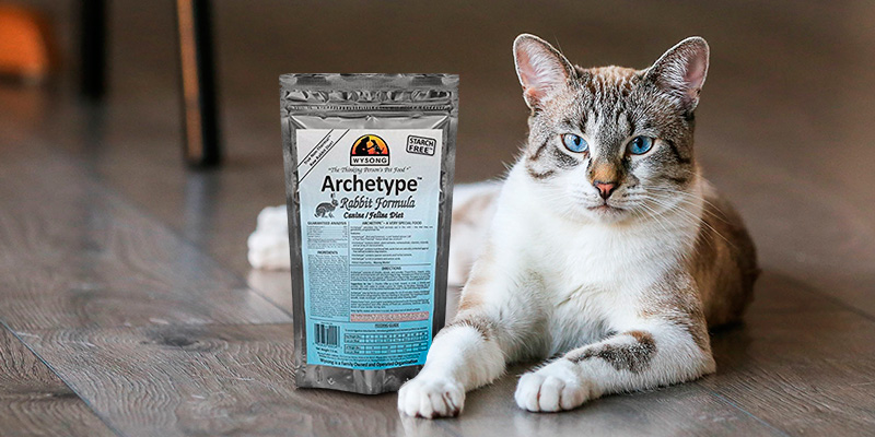 Review of Wysong Archetype Raw Diet Dog/Cat Food