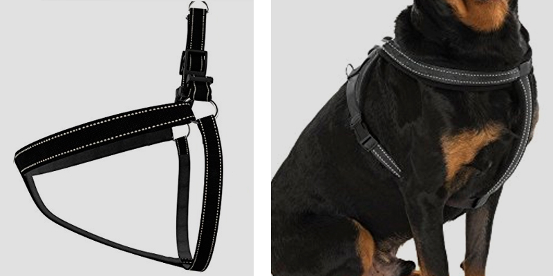 Droiee Adjustable Dog Harness Collar application