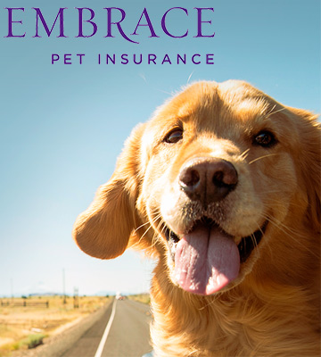 Review of Embrace Pet Insurance
