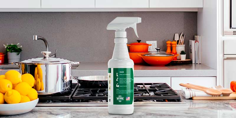 Review of mdxconcepts Organic Home Pest Control Spray