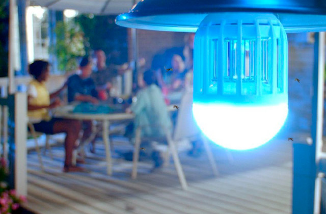 Best Bug Zapper Bulbs