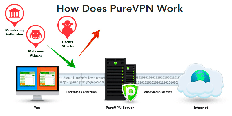 PureVPN Service in the use