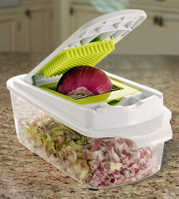 Review of Brieftons QuickPush Food Chopper