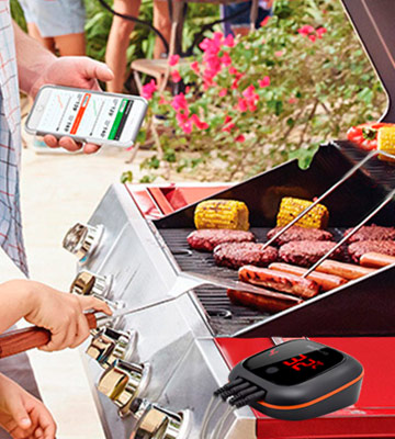 Review of Inkbird IBT-4XS Bluetooth Wireless BBQ Thermometer for Grilling
