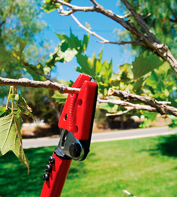 Review of Corona LR 3460 Long Reach Tree Cut and Hold Pruner