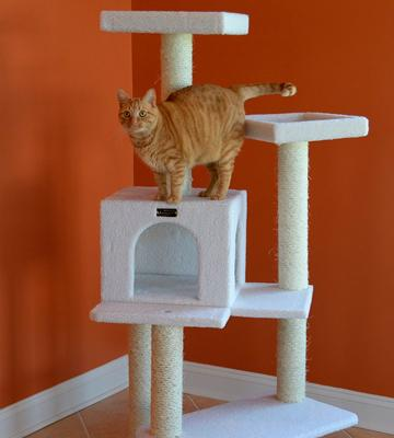 Review of Armarkat Cat Tree Furniture Condo