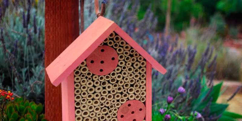 Review of Cestari Bee Houses Etc. 01 Bamboo Tube Mason Bee House