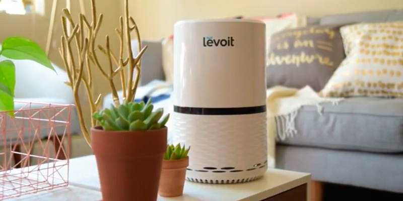 Review of Levoit LV-H132 Air Purifier Filtration with True HEPA Filter